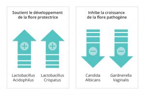 L'effet de Lactacyd Pharma sur la flore intime